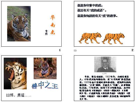 华南虎ppt19 人教版